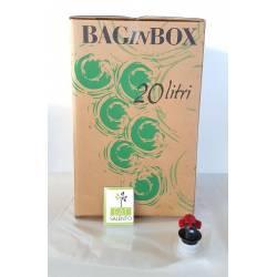 BAG IN BOX LITRI 20 CON SACCA E RUBINETTO PZ 5